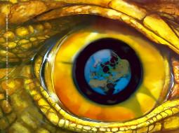 животное, глаз, calendar, 2020