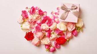 праздничные, подарки и коробочки, подарок, розы, бутоны, бант, лента