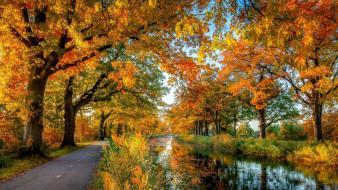 природа, дороги, дорога, река, осень