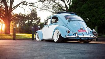 автомобили, volkswagen, beetle