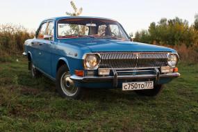 газ- 24 волга, автомобили, газ, седан, автомобиль, волга, ретро, классика, газ-, 24
