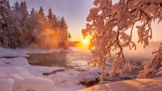 обои для рабочего стола 1920x1080 природа, реки, озера, мороз, ветвь, снег