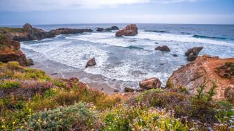 природа, побережье, калифорния