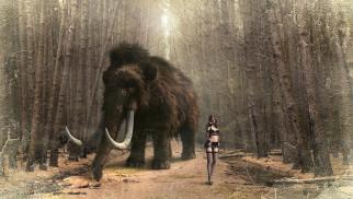 3д графика, люди и животные , people and animals, девушка, лес, мамонт, животное, бивни, слон, хобот, шерсть