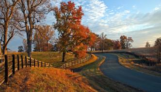 природа, дороги, листопад, осень, шоссе
