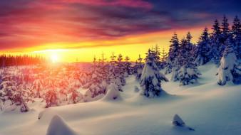 природа, зима, украина, карпаты
