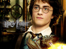 кино фильмы, harry potter & the goblet of fire, дракон, гарри, поттер
