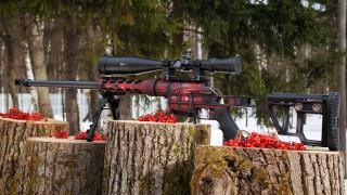 оружие, снайперская винтовка, двл-10, м2, урбана
