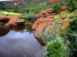 природа, побережье, вода, камни, трава