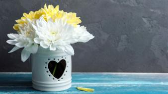 цветы, хризантемы, букет