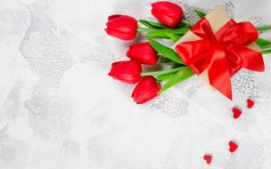 бант, лента, подарок, тюльпаны
