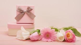 бант, лента, подарки, тюльпаны, гербера