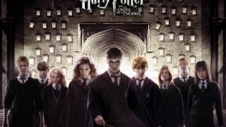 Хогвардс, ученики, декреты, Гарри Поттер