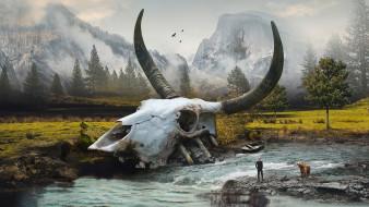 рога, речка, череп, останки, человек, вода, долина, мир
