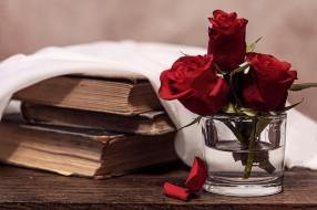цветы, розы, книги, лепестки