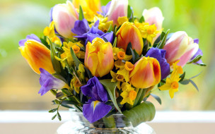 цветы, букеты,  композиции, нарцисс, ирис, тюльпан
