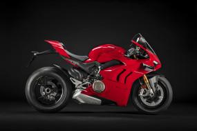 ducati panigale v4s, мотоциклы, ducati, panigale, v4s, мотоцикл, красный