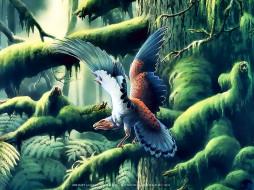 календари, фэнтези, птица, крылья, дерево, природа, растение, calendar, 2020