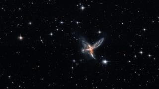 космос, галактики, туманности, eso, 593-8, -, the, bird