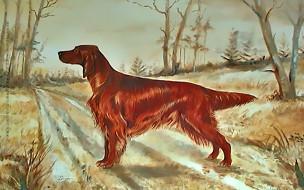 собака, гончая, дорога, природа, растение, calendar, 2020