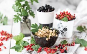 еда, фрукты,  ягоды, ягоды, миска, смородина
