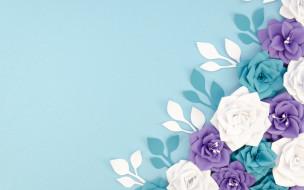 векторная графика, цветы , flowers, цветы, бумага, фон, голубой
