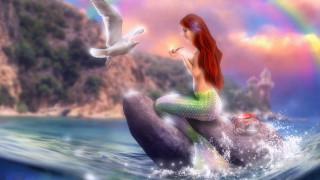 девушка, фон, камень, хвост, чайка