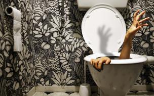 туалет, унитаз, руки