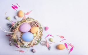 праздничные, пасха, праздник, весна, яйца, перья