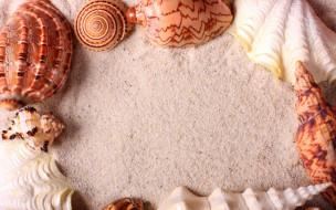 разное, ракушки,  кораллы,  декоративные и spa-камни