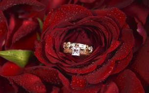 разное, украшения,  аксессуары,  веера, цветок, роза, кольцо