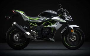 2020 kawasaki z125 eu, мотоциклы, kawasaki, z125, 4k, супербайк, 2020, года, eu, spec, японские