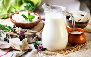 еда, масло,  молочные продукты, сметана, молоко, сыр, творог