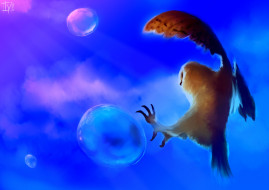 пузыри, птица, сова, фон