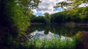 природа, реки, озера, пруд