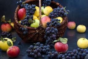 еда, фрукты,  ягоды, ягоды, яблоки, виноград
