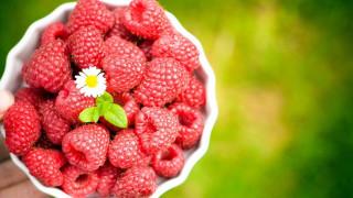еда, малина, миска, цветок, ягоды
