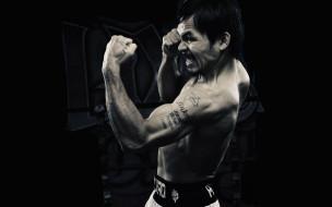 Manny Pacquiao, боксер, апперкот, удар