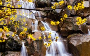 поток, водопад, вода