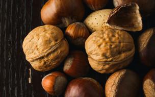 еда, орехи,  каштаны,  какао-бобы, ассорти