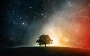 разное, компьютерный дизайн, дерево, трава, небо, звезды