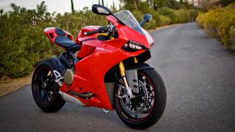 обои для рабочего стола 2560x1440 мотоциклы, ducati, 1199
