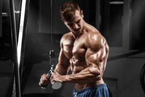 спорт, мужчина, тренировка, блок, бицепс