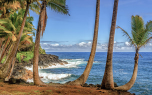 обои для рабочего стола 2880x1800 природа, тропики, гавайи, пальмы, море, берег