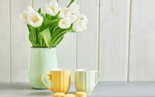обои для рабочего стола 2880x1800 цветы, тюльпаны, букет, бутоны