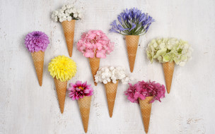цветы, разные вместе