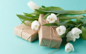 цветы, тюльпаны, бутоны
