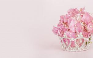 цветы, гортензия, розовый