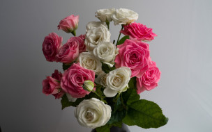 белый, розовый, розы, бутоны, букет