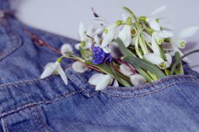 цветы, разные вместе, джинсы, весна